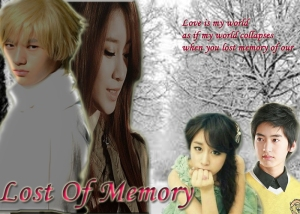 Lost of Memory copy